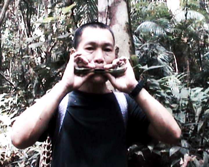 Nick blowing a leaf whistle in the Ulu Baram.